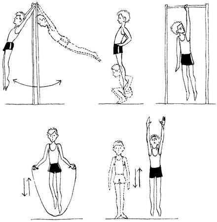 Упражнение для роста тела в домашних условиях