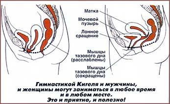 trenirovka-analnogo-sfinktera